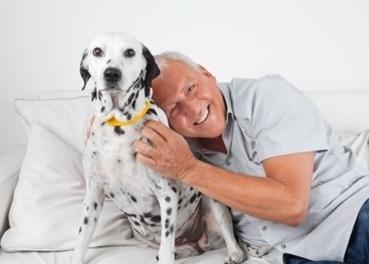ผู้สูงอายุกับสัตว์เลี้ยง